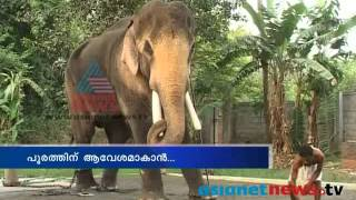 Thrissur Pooram 2014: Thechikottukavu Ramachandran is ready to take Thidambu