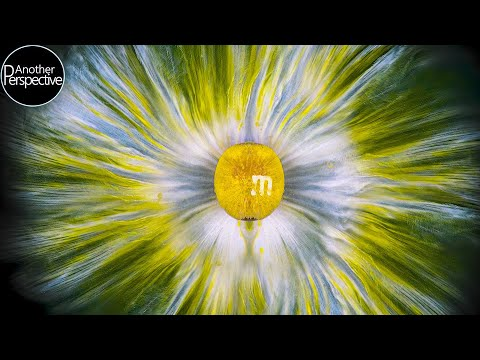 Macro Photography and Video Ideas using M&M's