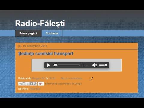 Şedinţa comisiei transport : reportaj Radio Făleşti