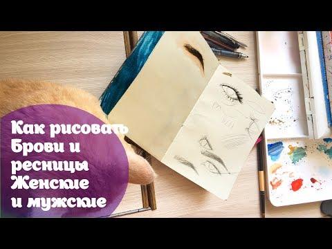 Как нарисовать брови карандашом на бумаге