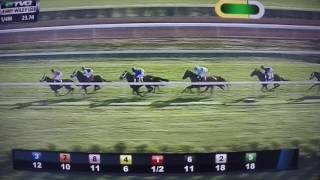 COOLMORE JENNY WILEY S. G1 STAKES -DICKINSON!!!