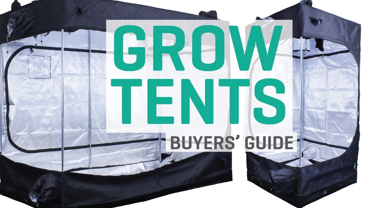 6+ Best 4x4 Grow Tent - 2019 Reviews | GrowYour420