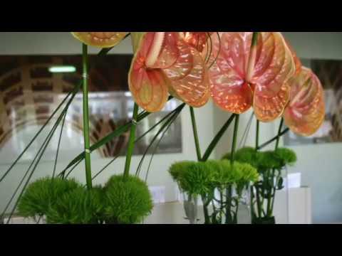 Office Decoration, Reception decoration, Flowers, Floral, Munich
