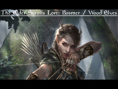 The Elder Scrolls Lore: The Bosmer | Wood Elves