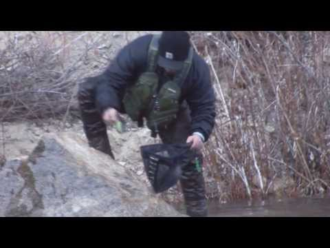 Dry Fly Fishing The South Fork Of The Boise River
