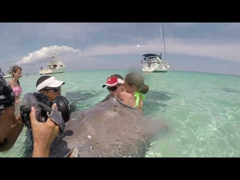 Stingray City Grand Cayman GoPro