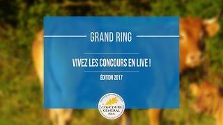 Direct - Grand Ring | Mardi 28 février