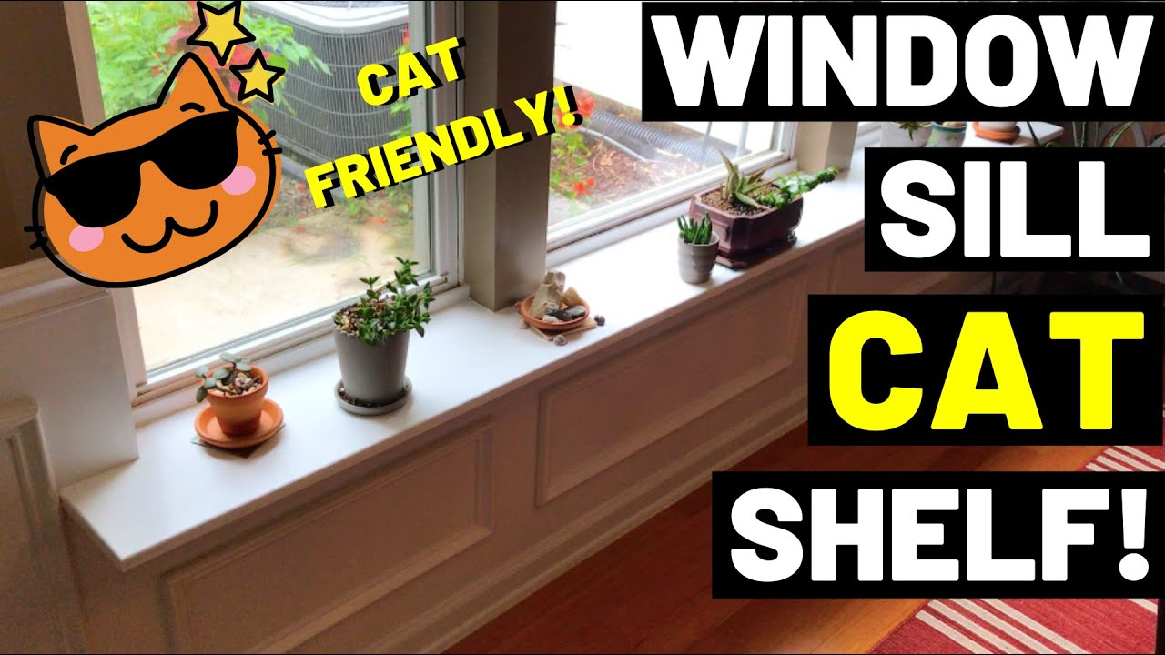 Diy Cat Shelf Plant Shelf Window Sill Shelf Extension Give Cats And Plants A Place To Sit Youtube