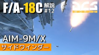 【DCS】F/A-18C ホーネット 解説実況12:AIM-9 サイドワインダー
