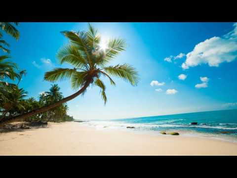 3 HOURS Lounge Chillout Ambient music Summer 2016 | Cocktail Miami | Wonderful Relaxing music