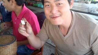 Wolffia Globosa Trip (ภารกิจพิชิตไข่ผำ) E.p. 2 How to eat Insect