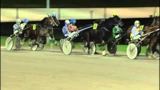 Vidéo de la course PMU PRIX WWW.VICTORIAPARKWOLVEGA.NL (TF GOLDEN CHALLENGE)