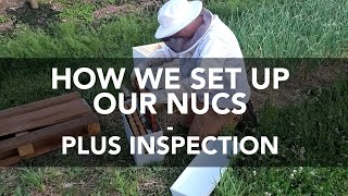 How We Set up Our Nucs - Beekeeping