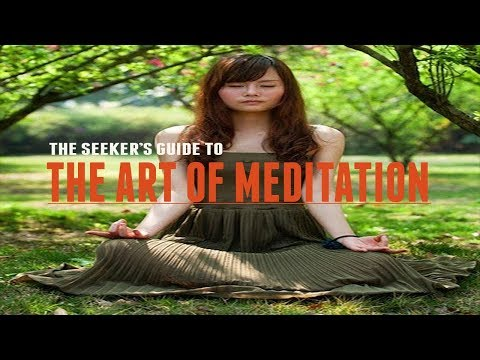 The Art of Meditation | How to Meditate