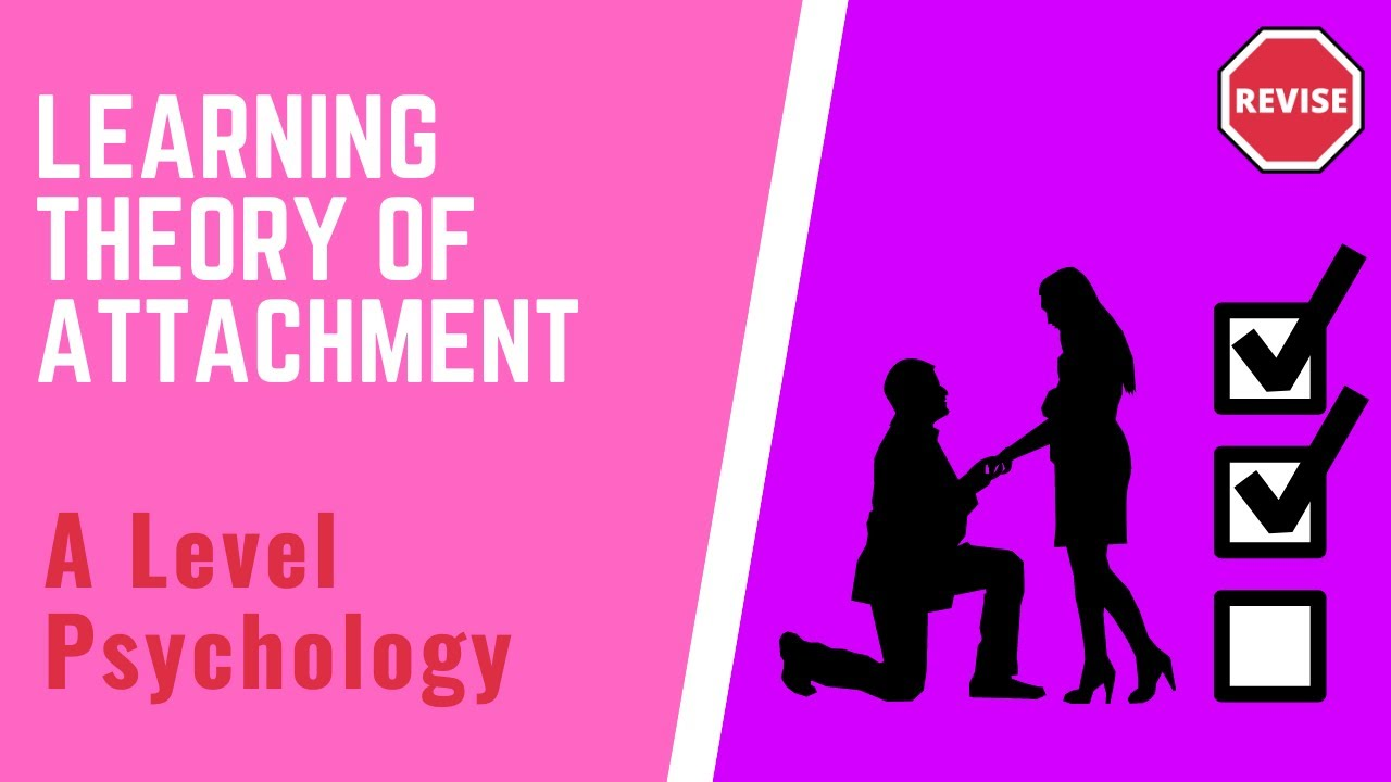 essay on the learning theory of attachment