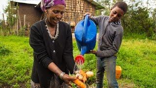 Working Together toGrowa Green Economy