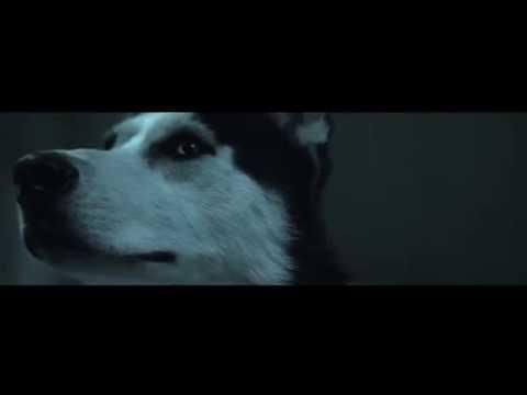 PIL C feat. LARIS DIAM - DEŇ ZA DŇOM (prod. SPECIAL BEATZ)