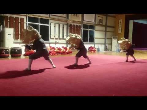 Level 1 Chan Wu Lion Dance Basic Techniques with weights