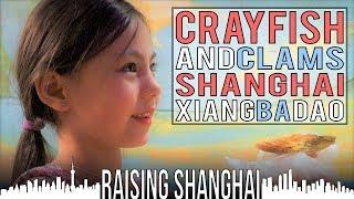 CRAYFISH AND CLAMS AT SHANGHAI XIANG BA DAO | RAISING SHANGHAI