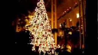 O Christmas Tree! Opryland Resort's Christmas Tree Thumbnail