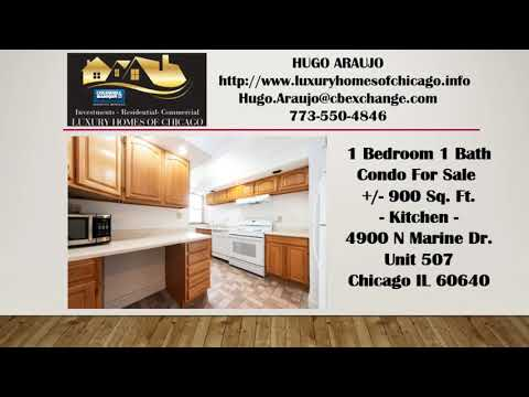 1 Bedroom 1 Bath condo for sale in MCCUTCHEON ELEMENTARY SCHOOL Uptown 60640 on Lakeshore