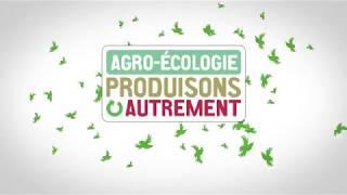 La filière Soja en Saône-et-Loire : des performances en perspective