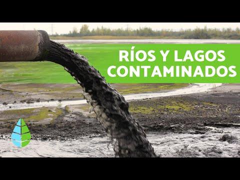 CAUSAS Y CONSECUENCIAS De La CONTAMINACIÓN De LAGOS Y RÍOS