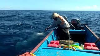 Mancing tuna di morotai