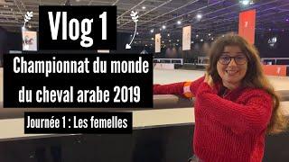 Vlog - Championnat du monde du cheval arabe (épisode 1)