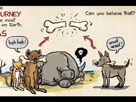 Dogs vs. Hyenas