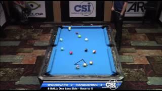 2014 Csi Usbtc 8 Ball: Shane Van Boening Vs Skyler Woodward