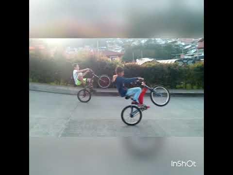 Stunt life Neira caldas