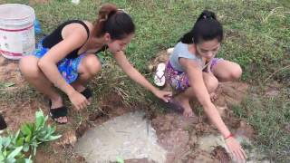 balık nasıl tutulur, nasıl yenir, kamboçyalı kızlardan izleyelim