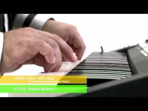 PSR-A2000 Introduction