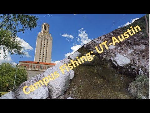 Campus Fishing: University Of Texas-Austin