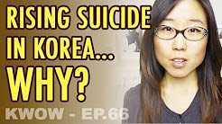 Rising Suicide Rates in South Korea. Why? // YOLO in Korean (KWOW #66)