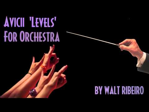 Avicii 'Levels' For Orchestra