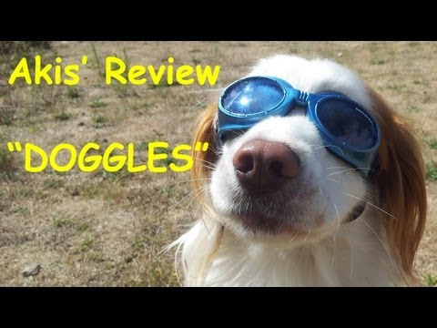 Akis' Unboxing / Review of Doggles Sunglasses