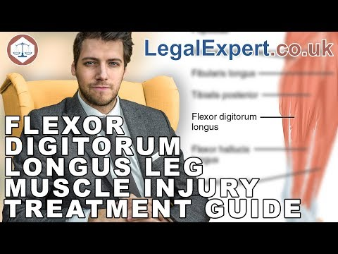 Flexor Digitorum Longus Leg Muscle Injury Treatment Guide ( 2019 ) UK