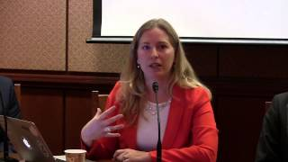 TACD event on IP in TTIP: June 25, 2014: Carolina Rossini, Public Knowledge