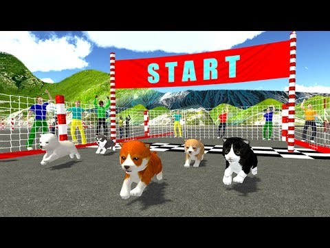 Cute Puppy Dog Racing Sim 2017 (by KidRoider) Android Gameplay [HD]