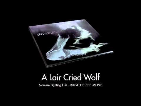 Клип Siamese Fighting Fish - A Liar Cried Wolf