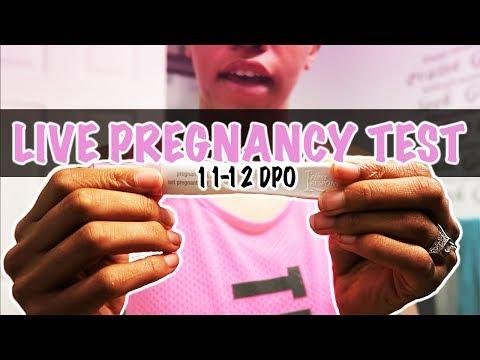 11 DPO - 12 DPO Live Pregnancy Test   Rainbow Baby :) - YouTube