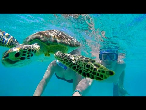 Curacao March 2016   Gopro Hero 4 Full HD