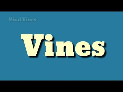 Vines - Meaning And Pronouncing In Hindi