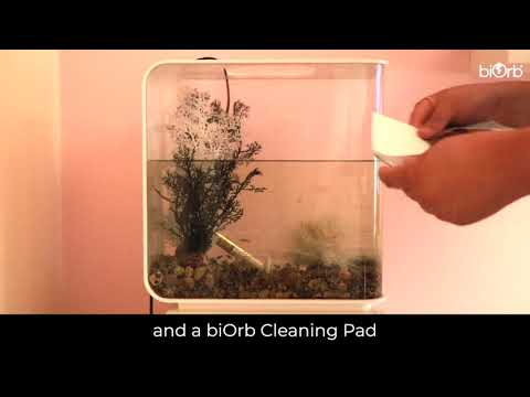 BiOrb FLOW 30L Complete Cleaning Guide