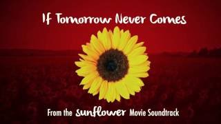 """If tomorrow never comes is the soundtrack to my short film """"sunflower"""". download mp3 free at www.sunflowerthemovie.com music and lyrics by: david b k..."""