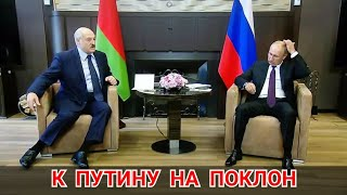 К Путину на поклон