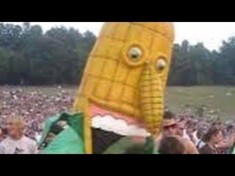 Cursed Corn