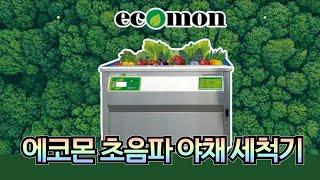 에코몬 초음파 야채세척기 / 과일, 야채의 잔류농약, …